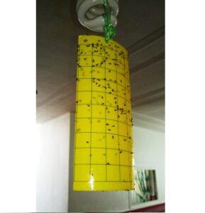 کارت زرد جاذب حشرات طرحدار (چسب حشره)